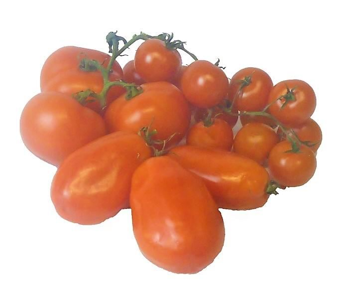 Fresh Italian Tomatoes approximate weight 750g